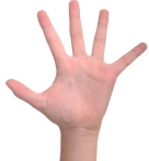 number-5-hand-finger