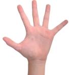 number-5-hand-finger